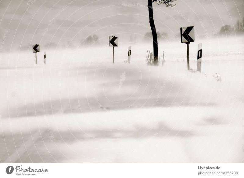 Wintertagtraum Winter Straße Schnee Landschaft Bewegung Schneefall Eis Wind Frost Sturm Unwetter Schneesturm
