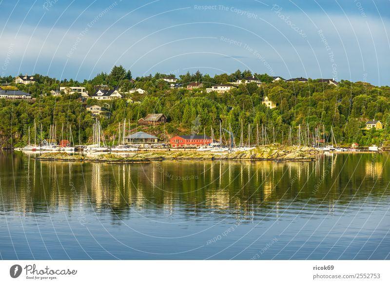 Blick auf die Stadt Bergen in Norwegen Erholung Ferien & Urlaub & Reisen Tourismus Meer Berge u. Gebirge Haus Natur Landschaft Wasser Baum Hafen Gebäude