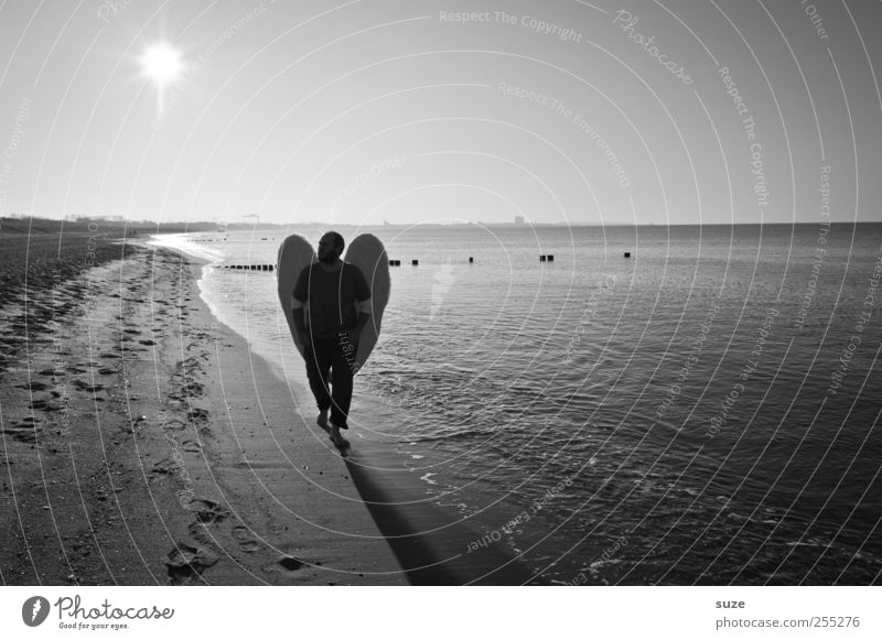 Engel Freiheit Strand Meer Mensch maskulin Mann Erwachsene 1 Wasser Horizont Küste Ostsee Flügel außergewöhnlich Hoffnung Glaube Religion & Glaube Schutzengel