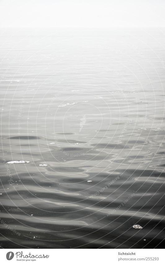 Seenebel Natur Wasser Meer ruhig Einsamkeit Ferne grau Küste Wellen Horizont Nebel leer trist Unendlichkeit Nordsee Ostsee