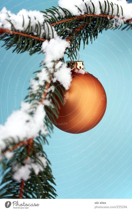 Advent Foto Winter Schnee Tannenzweig Kugel Christbaumkugel Kitsch blau grün weiß Gefühle Stimmung Freude Fröhlichkeit Zufriedenheit Vorfreude