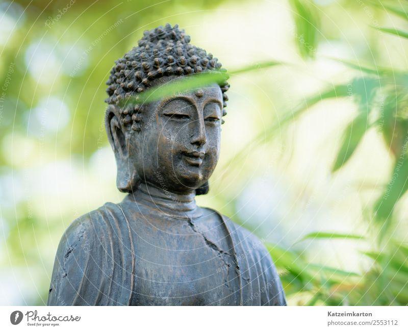Buddah im Zengarten Natur Sommer Erholung ruhig Gesundheit Lifestyle Gefühle Glück Garten Tourismus Freiheit Stein Design Zufriedenheit Kraft Lebensfreude