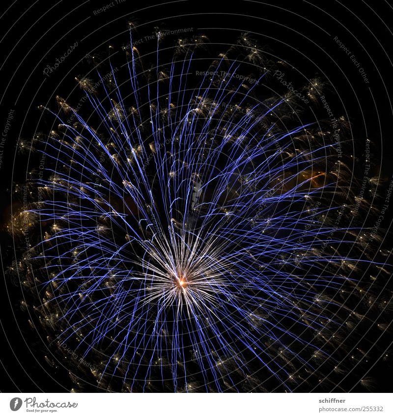 Für dich soll's bunte Bilder regnen blau schön Feste & Feiern Stern (Symbol) Silvester u. Neujahr Feuerwerk Nachtleben Knall explodieren Pyrotechnik Nationalfeiertag