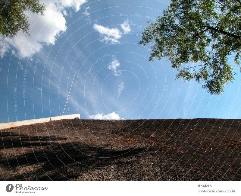 sonnige Aussichten Himmel Baum Sonne blau Haus Wolken Graffiti Wetter Perspektive Aussicht Dach Stroh