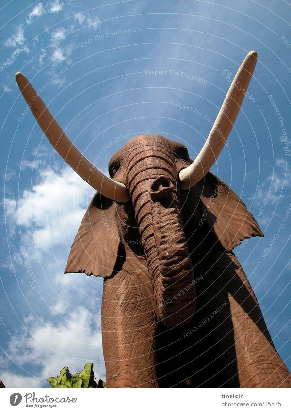 Steinjumbo Himmel Wolken Stein braun Perspektive Gebiss Afrika Skulptur Elefant Rüssel