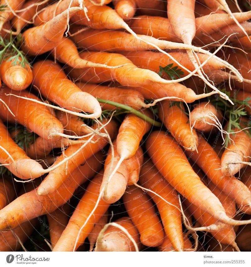 Alles Gute, Photocase - und Möhrchen satt zum 10-Jährigen! Lebensmittel Gemüse Ernährung Vegetarische Ernährung Gesundheit Menschenmenge viele Möhre Vitamin