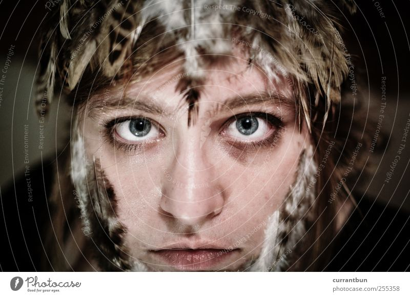 für dich solls buntes (roadkill) regnen Frau schön Gesicht Auge Abenteuer Feder einzigartig Metallfeder Mütze entdecken skurril Vogel Federvieh Mensch Textilien