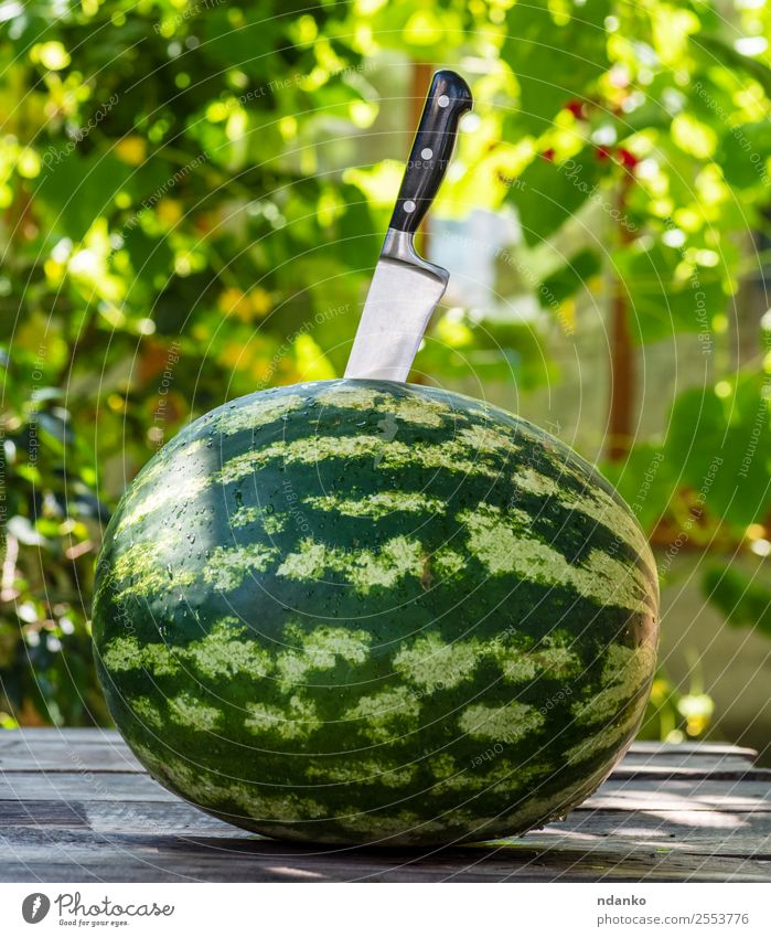grüne runde Wassermelone Frucht Dessert Ernährung Vegetarische Ernährung Diät Messer Sommer Natur Essen frisch lecker natürlich saftig Farbe Beeren Lebensmittel