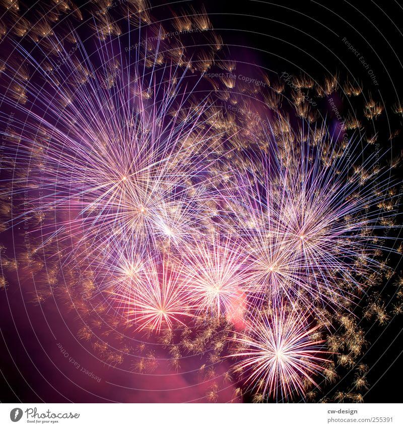 Für Dich soll's bunte Bilder regnen. blau schwarz Feste & Feiern glänzend Silvester u. Neujahr Feuerwerk Veranstaltung Explosion Nachtleben Knall Pyrotechnik