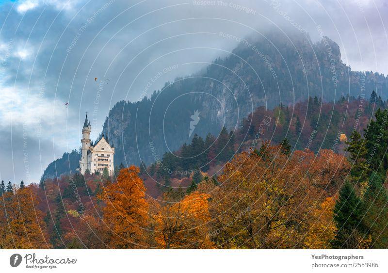 Herbstfarbener Wald in den bayerischen Alpen schön Ferien & Urlaub & Reisen Berge u. Gebirge Natur Landschaft Wolken Blatt Füssen Deutschland Burg oder Schloss