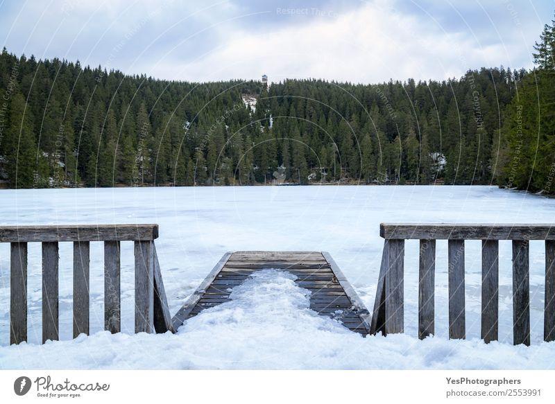 Kleiner hölzerner Pier und Zaun über einem zugefrorenen See Ferien & Urlaub & Reisen Winter Schnee Natur Landschaft Wetter Schwarzwald Brücke Sehenswürdigkeit