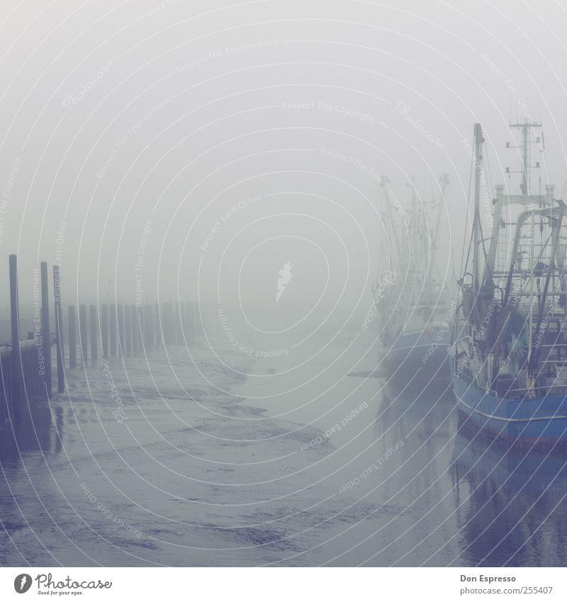 Klabauterwetter Wasser ruhig Einsamkeit Herbst kalt Küste Stimmung Wasserfahrzeug Nebel warten nass liegen Trauer Sehnsucht Hafen Nordsee