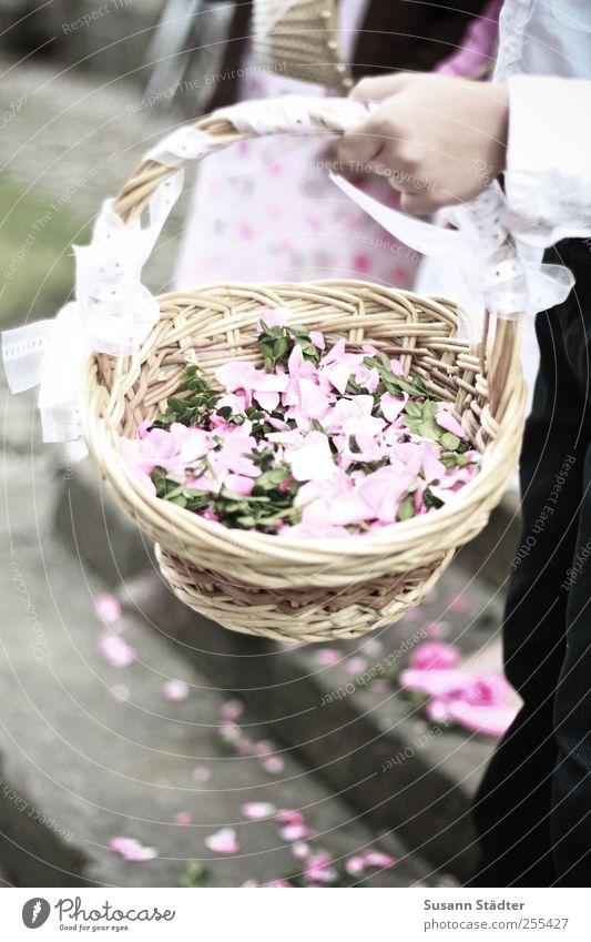 Für Dich soll's bunte Bilder regnen Mensch Hand Glück Feste & Feiern rosa Treppe Hochzeit Kirche Anzug Tradition Korb Hippie Blütenblatt Ritual verteilen