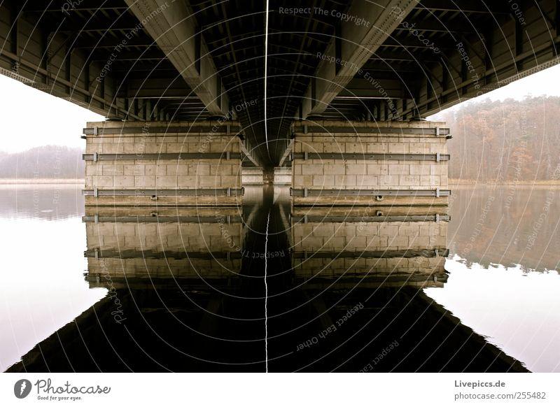 unter der A 19 Landschaft Wasser Herbst Nebel Fluss Brücke Architektur ruhig Farbfoto Außenaufnahme Morgen Reflexion & Spiegelung Froschperspektive