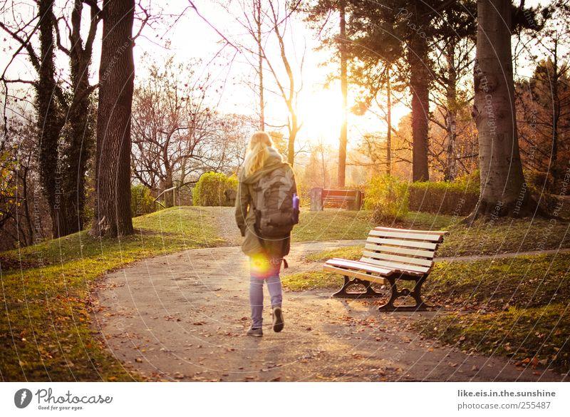 Spätsommer. Mensch Frau Jugendliche Baum Einsamkeit ruhig Erwachsene Erholung Wiese Herbst Leben Landschaft Gras Wärme Garten träumen