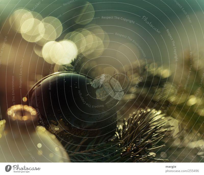Für dich soll´s bunte kugeln regnen: Weihnachtskugeln und Tannenzweige Winter Schnee Feste & Feiern Weihnachten & Advent Weihnachtsbaum Weihnachtsdekoration