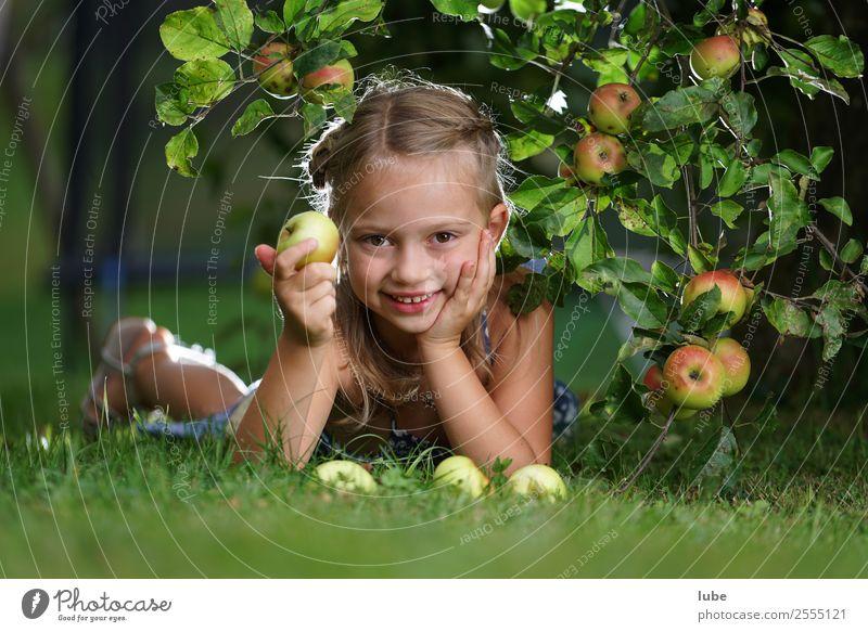 Apfelmädchen Lebensmittel Frucht Ernährung Bioprodukte Vegetarische Ernährung Glück Gesundheit Gartenarbeit Landwirtschaft Forstwirtschaft Mädchen Kindheit 1