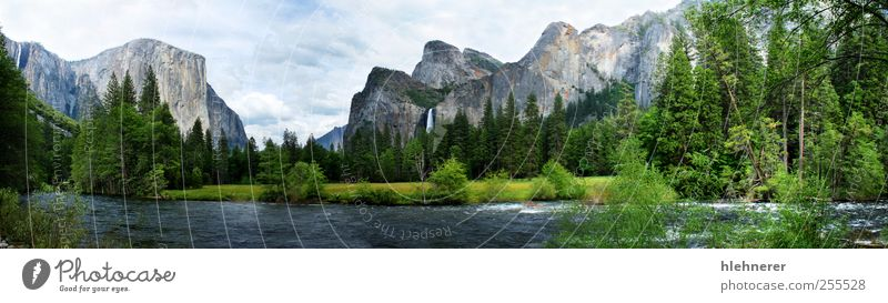 El Capitan Yosemite Nationalpark schön Ferien & Urlaub & Reisen Tourismus Freiheit Sommer Berge u. Gebirge Umwelt Natur Landschaft Himmel Wolken Baum Gras Park