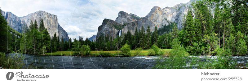 Himmel Natur blau schön Baum Ferien & Urlaub & Reisen Sommer Wolken Einsamkeit Wald Wiese Umwelt Freiheit Landschaft Berge u. Gebirge Gras