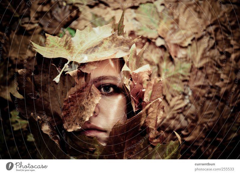 black leaf falls Frau Blatt Einsamkeit Auge Gefühle skurril Blumenstrauß Erschöpfung bedeckt Blattadern schuldig Blattgrün Blattfaser Blattschatten
