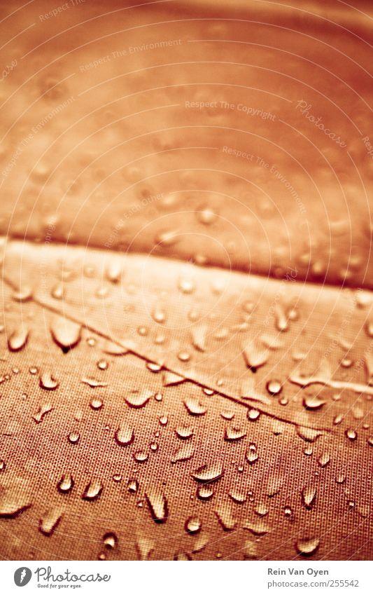 Orangefarbene Tropfen Wasser Wassertropfen Regen Flüssigkeit Glück orange Konsistenz Strukturen & Formen abstrakt Makroaufnahme zufällig Zufälligkeit gelb nass