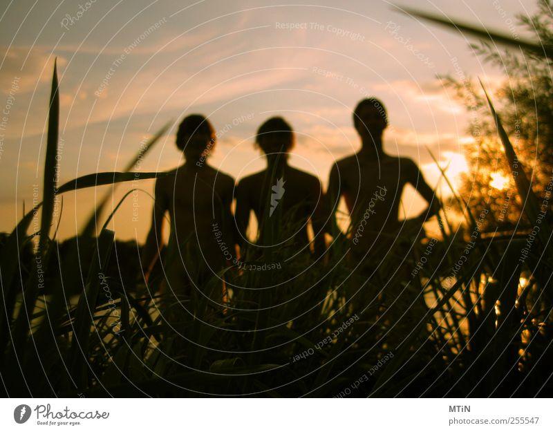 Mensch Himmel Natur Jugendliche Wasser Pflanze Sonne Sommer Wolken Erwachsene Landschaft Leben Gras Freundschaft Park Schwimmen & Baden