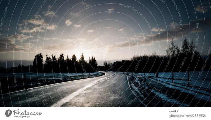 Das Weite suchen Umwelt Natur Landschaft Pflanze Himmel Wolken Sonne Winter Schönes Wetter Schnee Baum Feld Wald Straße Kurve leuchten frisch glänzend