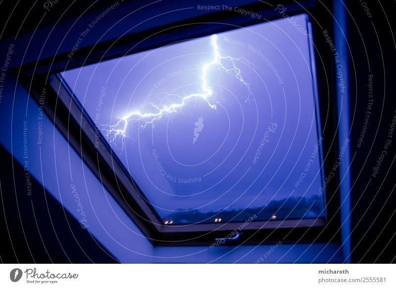 Blitz im Fenster Umwelt Natur Himmel Gewitterwolken Klima Wetter schlechtes Wetter Unwetter Sturm Blitze bedrohlich rebellisch Stadt blau violett Angst Wut