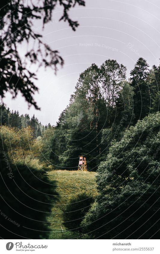Hochsitz in der Ferne Gesundheit Gesundheitswesen Freizeit & Hobby Ausflug Abenteuer Freiheit Berge u. Gebirge wandern Umwelt Natur Landschaft Wolken Frühling