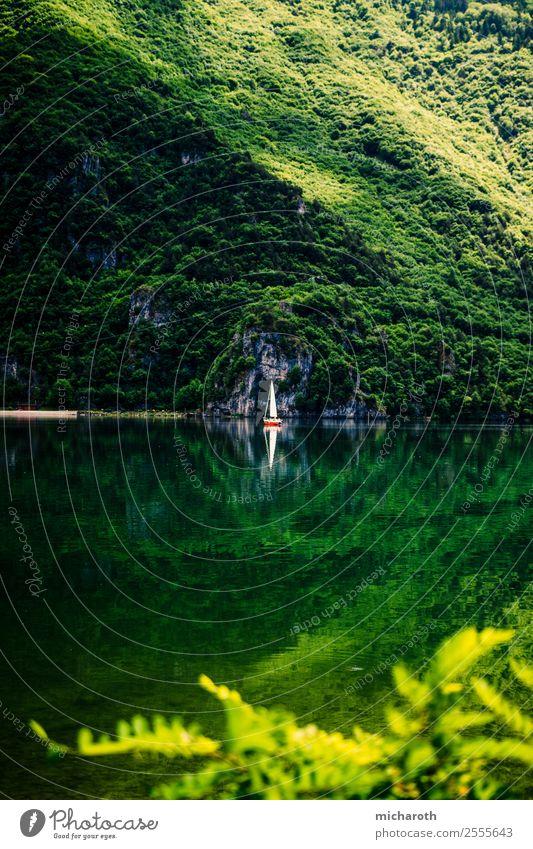 Segelboot im grünen See elegant Wellness Leben harmonisch Wohlgefühl Zufriedenheit ruhig Spa Angeln Ferien & Urlaub & Reisen Tourismus Ausflug Abenteuer Ferne