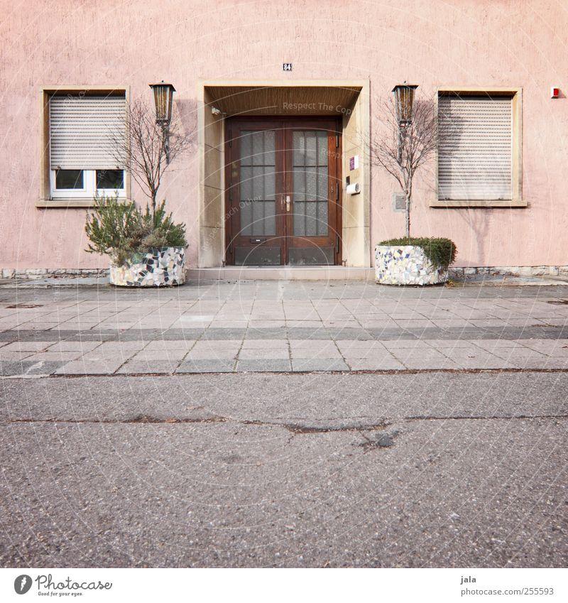 es ist unsinn, türen zuzuschlagen... Pflanze Topfpflanze Haus Platz Bauwerk Gebäude Architektur Mauer Wand Fassade Fenster Tür Rollladen trist grau rosa