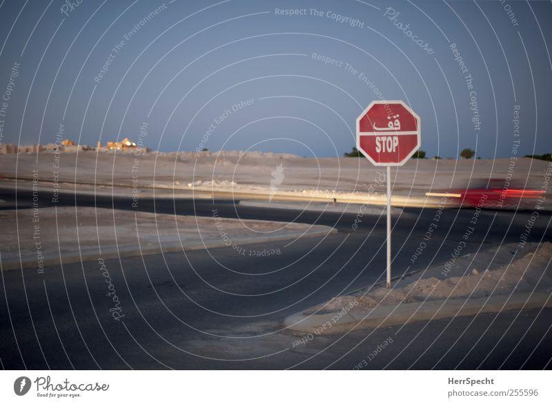 You better stop Natur Landschaft Sand Wüste Verkehr Autofahren Straße Straßenkreuzung Verkehrszeichen Verkehrsschild Fahrzeug PKW Zeichen Schriftzeichen blau