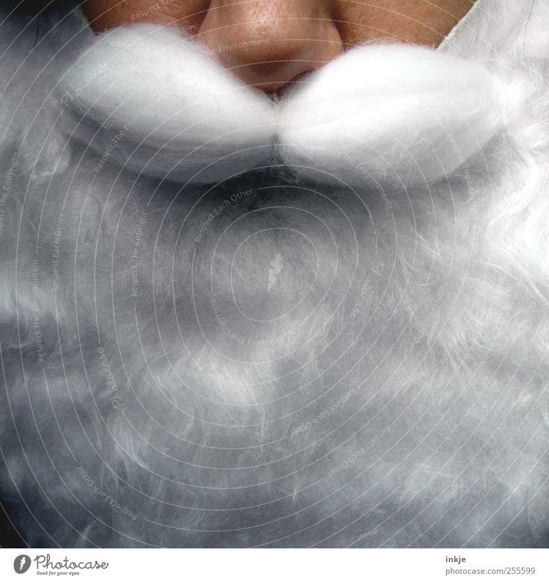 VollBart Freizeit & Hobby Weihnachten & Advent androgyn Erwachsene Senior Leben Gesicht 1 Mensch Vollbart außergewöhnlich Kitsch nah weiß Gefühle Ehrlichkeit