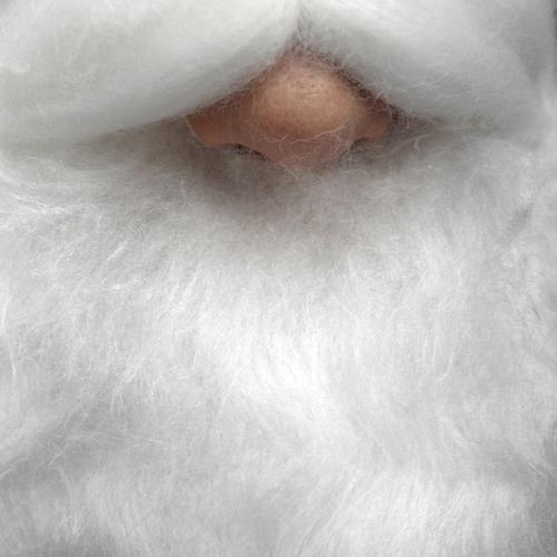Rudolph Freizeit & Hobby Weihnachten & Advent Weihnachtsmann androgyn Erwachsene Senior Leben Nase Bart 1 Mensch weißhaarig Vollbart außergewöhnlich Kitsch nah