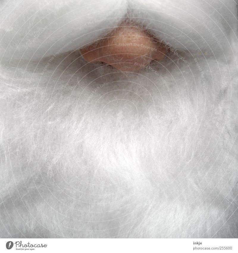 Rudolph Mensch Weihnachten & Advent weiß Erwachsene Leben Gefühle Senior Kindheit Freizeit & Hobby Nase authentisch außergewöhnlich einzigartig weich Kitsch nah