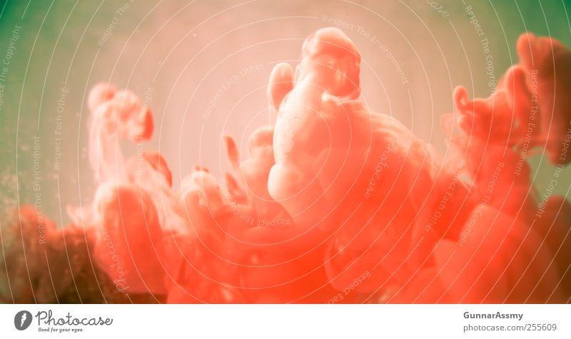 rote bewegung alt grün Wasser rot Gefühle dreckig Kraft ästhetisch verrückt retro rund Rauch Tatkraft