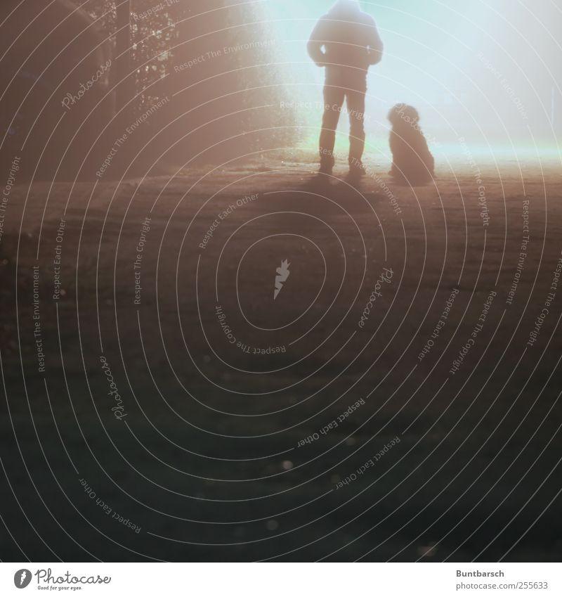 vor dem Licht Mensch maskulin Mann Erwachsene 1 Wege & Pfade Sandweg Schlagloch Bodenerhebung Tier Haustier Hund sitzen stehen warten dunkel Partnerschaft