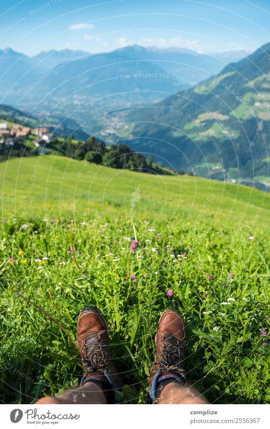 Alpen Wanderung & Rast in Blumenwiese Picknick Freude Zufriedenheit Erholung Ferien & Urlaub & Reisen Ausflug Ferne Freiheit Sommerurlaub Sonne Berge u. Gebirge