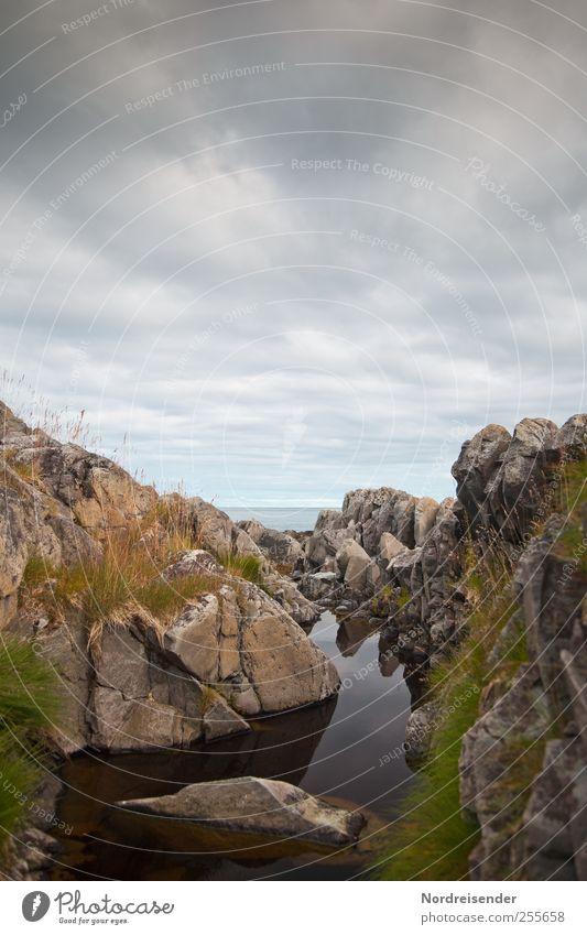 Dunkle Wasser Sinnesorgane Erholung ruhig Natur Landschaft Pflanze Urelemente Wolken Gras Felsen Riff Meer Einsamkeit Stimmung maritim Farbfoto Gedeckte Farben