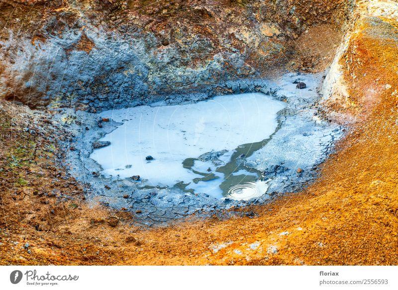 Heißes Schlammloch auf Island Ferien & Urlaub & Reisen Tourismus Ausflug Abenteuer Ferne wandern Umwelt Natur Landschaft Urelemente Erde Vulkan Hveragerdi