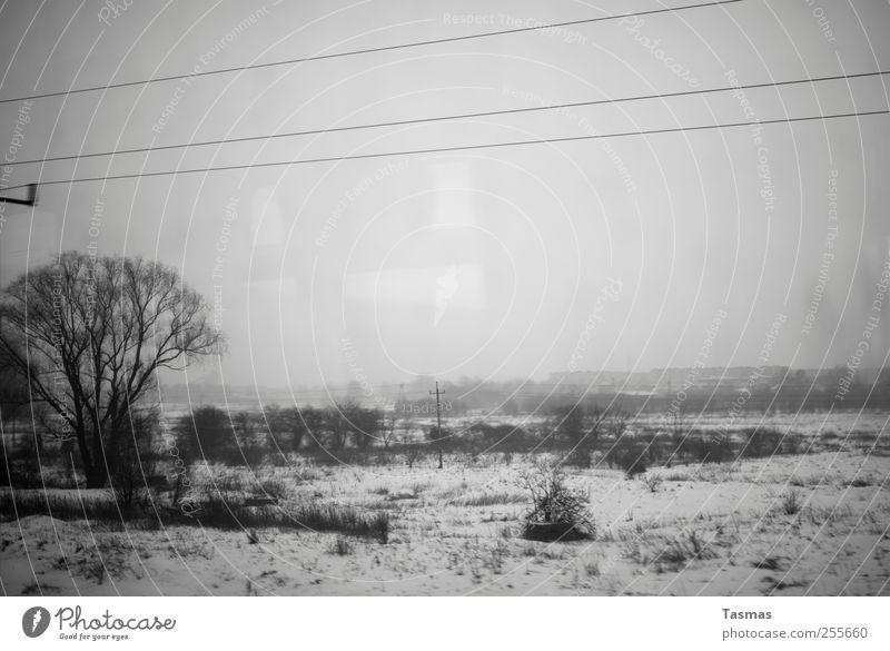 Every Planet We Reach Is Dead Landschaft schlechtes Wetter Schnee Verkehr Verkehrsmittel Personenverkehr Öffentlicher Personennahverkehr Bahnfahren Eisenbahn