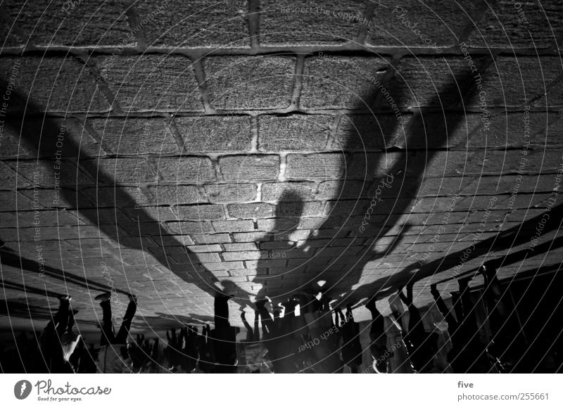 wiener stadtleben kaufen Ferien & Urlaub & Reisen Tourismus Ausflug Sightseeing Städtereise Mensch maskulin Leben Kopf Fuß Menschengruppe Menschenmenge Stadt