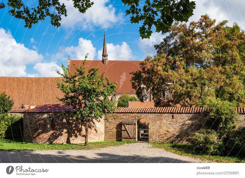 Blick auf das Kloster zum Heiligen Geist in Rostock Tourismus Haus Garten Wolken Baum Stadt Turm Gebäude Architektur Mauer Wand Sehenswürdigkeit alt historisch