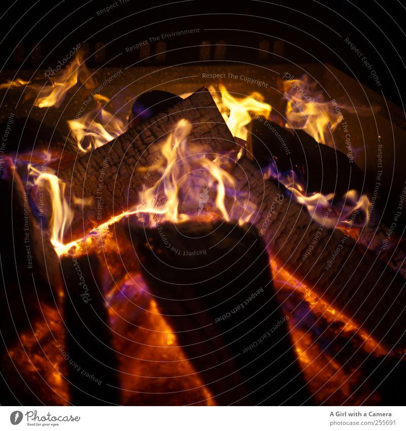 Come on Baby rot schwarz gelb Holz glänzend gold leuchten Urelemente Feuer heiß Flamme heizen Feuerstelle Jahreszeiten