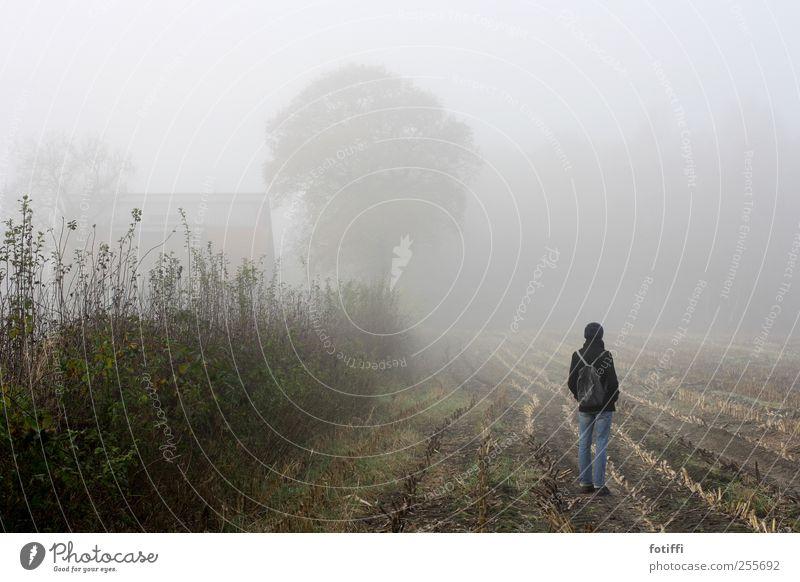 mädchen, nebel, feld & baum Mensch Himmel Natur Pflanze ruhig Ferne Herbst Landschaft Traurigkeit Wetter Erde Feld Nebel warten stehen Dunst