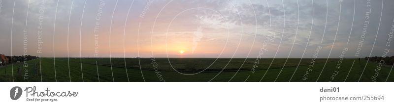 Sonnenuntergang an der Ostsee Himmel Wasser Meer Sommer Wolken Tier Herbst Umwelt Landschaft Gefühle Gras Küste Horizont