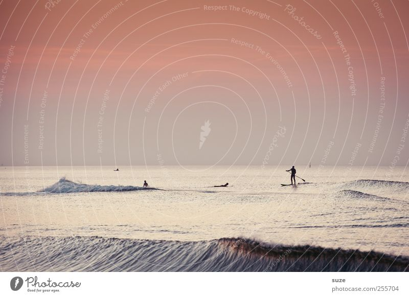 Endless Summer Freizeit & Hobby Umwelt Natur Landschaft Urelemente Wasser Himmel Wolkenloser Himmel Sommer Schönes Wetter Wellen Küste Ostsee Meer authentisch