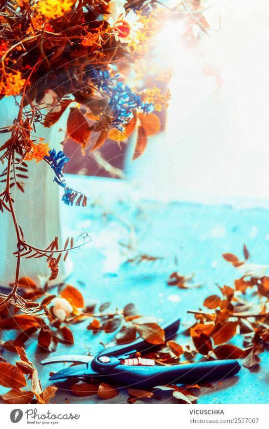 Herbst Blumenstauß auf blauem Tisch mit Schere Natur Lifestyle Leben gelb Innenarchitektur Stil orange Stimmung Häusliches Leben Design Wohnung