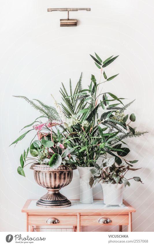 Modernes Stillleben mit Zimmerpflanzen auf Tisch Design Häusliches Leben Wohnung Garten einrichten Innenarchitektur Dekoration & Verzierung Natur Pflanze