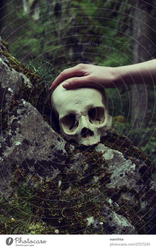 Hand, die einen menschlichen Schädel berührt. Design exotisch Halloween 1 Mensch Umwelt Natur Winter Moos Wald Felsen berühren alt dreckig dunkel gruselig